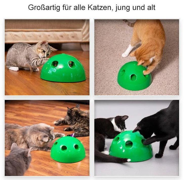 Pop Play Interaktives Katzenspielzeug Katzen Spielzeug Zuhause Unterhaltung Deheimu bekannt TV Werbung Tiere 3