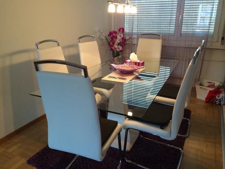 Nachmieter gesucht: für schöne 3.5 Zimmer Wohnung in Brugg AG 5200 Brugg Kanton:ag Immobilien 3