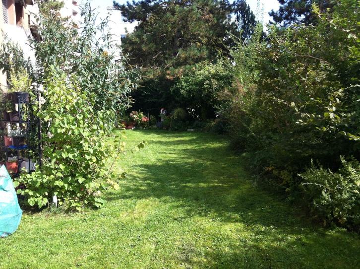 Grosse 4.5 Zimmer Gartenwohnung 8405 Winterthur Kanton:zh Immobilien 3