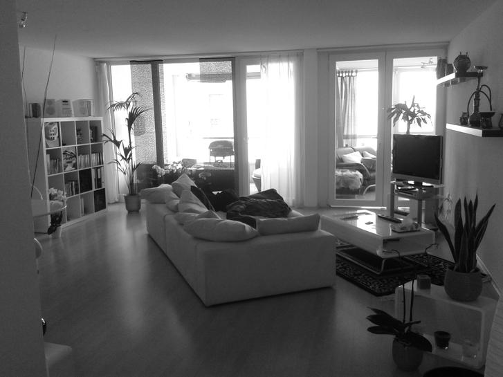 Moderne preiswerte 4.5 Zimmer Wohnung in Zürich per 1.12.2014 zu vergeben! 8046 Zürich Kanton:zh Immobilien