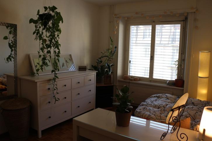 3 Zimmer Wohnung in Luzern 6005 Luzern Kanton:lu Immobilien 3