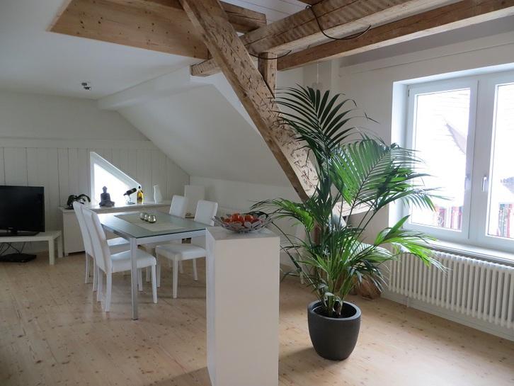Renovierte schöne 4,5 Zi-Wohnung in Kaltbrunn 8722 Kaltbrunn Kanton:sg Immobilien 2