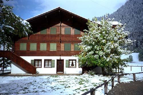 Ferienwohnung,4 Bett,Kinderfreundlich,Traumpanorama 3775 Lenk Kanton:be Immobilien