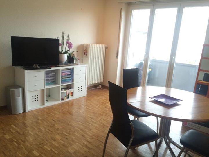 grosse helle 3 Zimmer Wohnung in Olten 4600 Olten Kanton:so Immobilien
