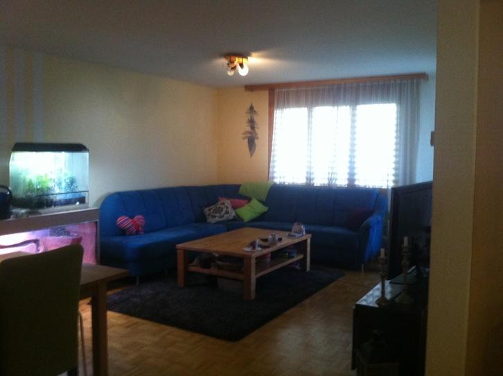 3.5 Zimmerwohnung mit Gartensitzplatz 8909 Zwillikon Kanton:zh Immobilien