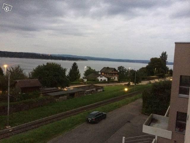 3,5 Zi 90qm mit Balkon, Kamin, Seesicht in Steckborn 8266 Steckborn Kanton:tg Immobilien