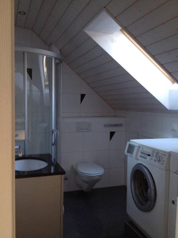 2,5 Zimmer Loft- Dachwohnung 5018 Erlinsbach Kanton:ag Immobilien 2