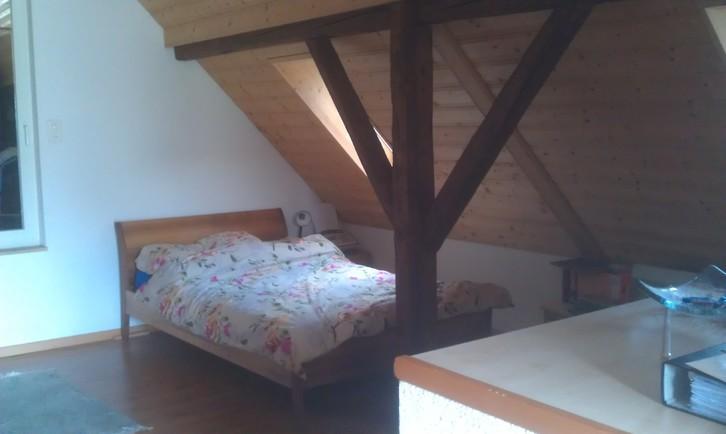 2 1/2 Zimmer Wohnung in 2 Fam. Haus 9450 Altstaetten Kanton:sg Immobilien 3