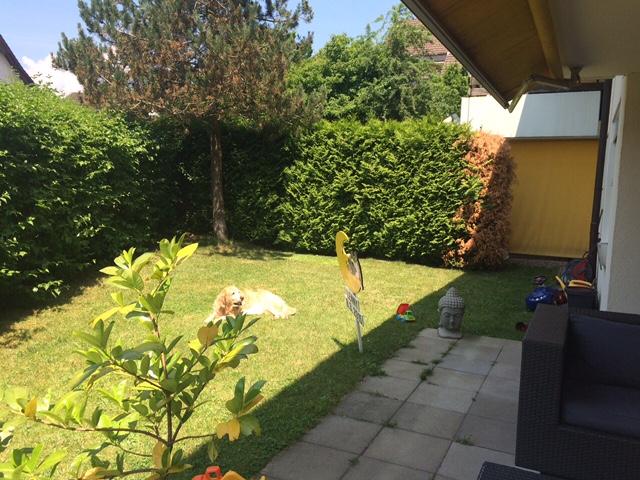 5 1/2 Zimmer Gartenwohnung EG in Adlikon b. Regensdorf 8106 Adlikon Kanton:zh Immobilien 2