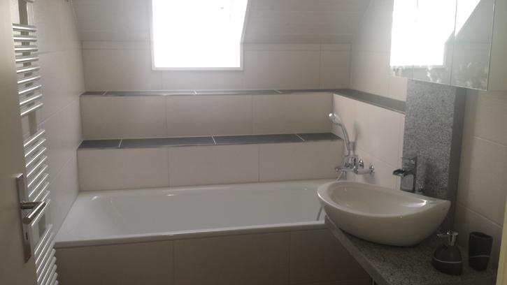 3,5+1 Duplex-Wohnung (127m2) Hornussen 5075 Hornussen Kanton:ag Immobilien 3