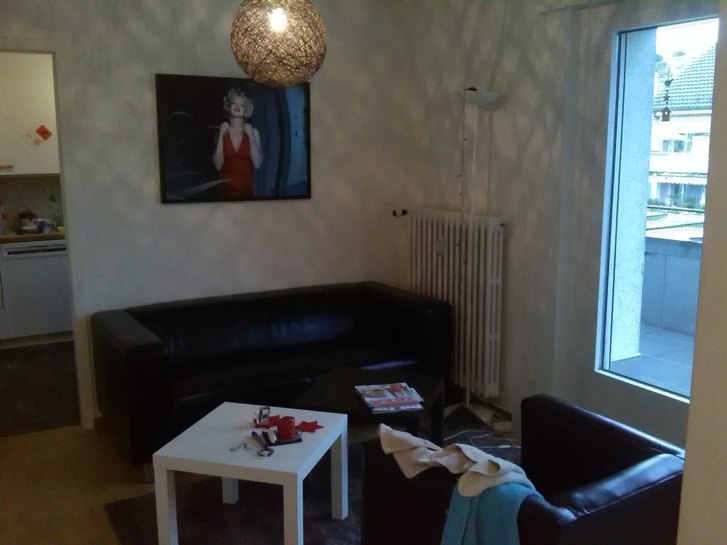 3,5 Zimmer Attika Wohnung in Zürich Höngg ab 01.08.2015  Kanton:zh Immobilien