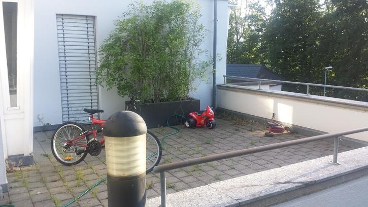 5.5 Zimmer-Terrassen-Haus in Gebenstorf mieten 5412 Gebenstorf Kanton:ag Immobilien 2