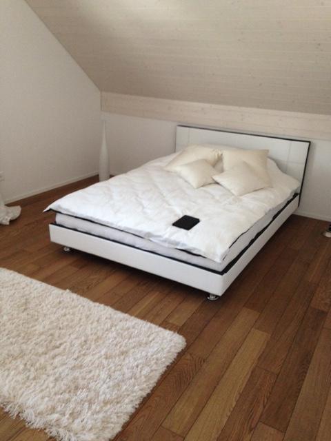 moderne 2,5 Zimmer Attika-Wohnung + begehbarer Kleiderschrank 5243 Mülligen Kanton:ag Immobilien 3