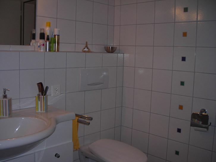 5 1/2 Zimme-Wohnung in Dreifamilienhaus 9523 Züberwangen Kanton:sg Immobilien 3