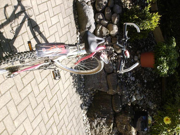 Damen Bike Verkaufen Sport & Outdoor 3
