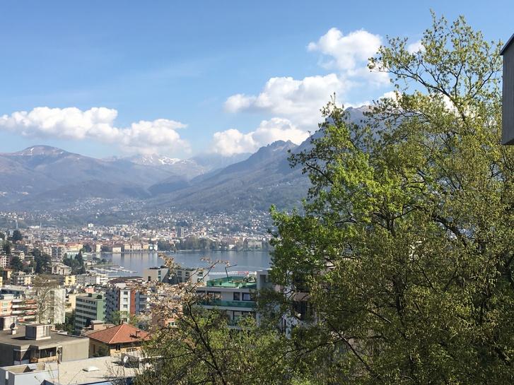 Affittasi 3,5 locali a Lugano-Pazzallo Immobilien