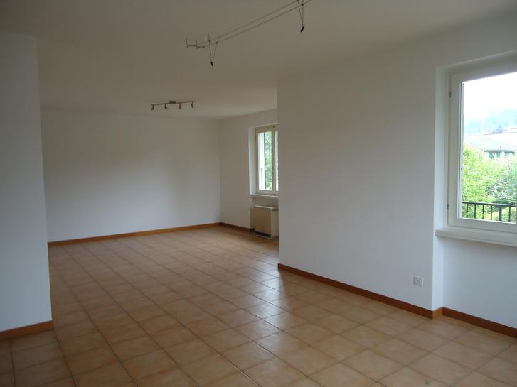 Affittasi appartamento Mendrisio Immobilien 2