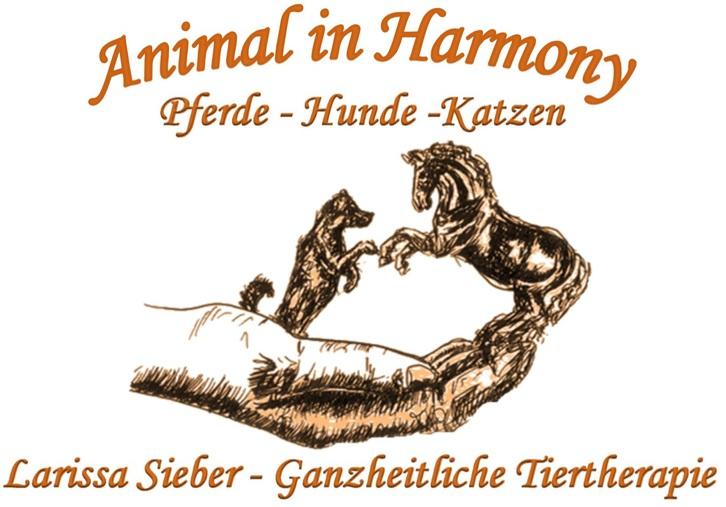 Animal in Harmony - Ganzheitliche Tiertherapie Tiere