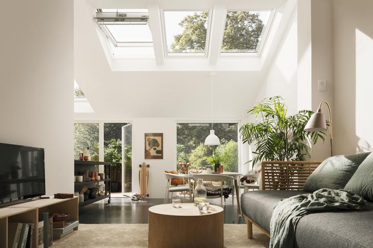 Dachfenster Service Garten & Handwerk 3