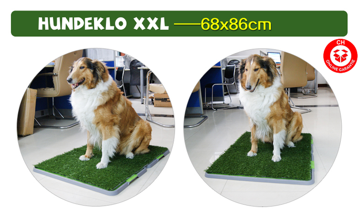 Hunde Hunde Welpen Klo WC XXL Grösse Hundeklo Welpentoilette Hundetoilette für Welpen Senioren Stubenrein mit Behälter Haushalt