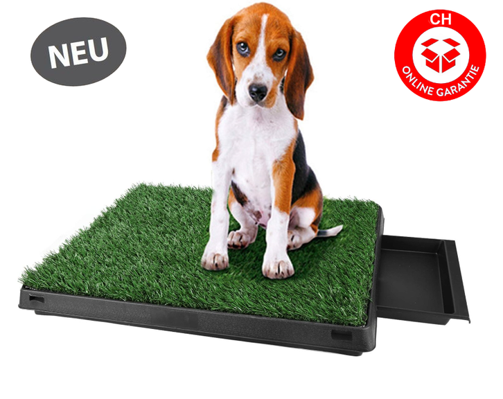 Hunde Welpen Klo Toilette Hundetoilette Welpentoilette Hundeklo Toilette Unterlagen Rasen Stubenrein Gasi Garten & Handwerk