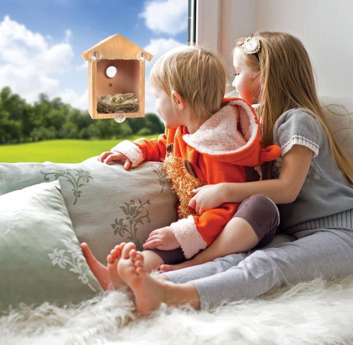 My Spy Birdhouse Mein Spion Vogelhaus Vogel Vögel Haus Nest Nester bekannt aus TV Kind Kinder Baby & Kind 4
