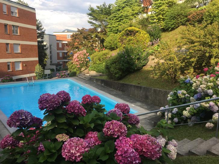 Straordinario ultimo piano 3,5 locali con fantastica vista lago in ottima posizione residenziale a Paradiso. Immobilien