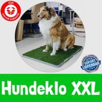 XXL Senioren Welpen WC Hundetoilette Hunde Klo Toilette WC Welpen Klo Stubenrein Gassigehen grosse Hunde Welpe Schweiz Indoor Outdoor Hundeklo