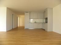 Komfortable 4.5 Zimmer Whg, Neubau in Buchs AG 5033 Buchs AG Kanton:ag