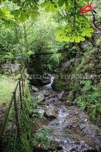 Villa con vista spettacolare immersa nel verde  Lugano 6900 Kanton:ti