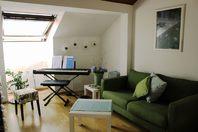 Schöne helle Dachwohnung in Kleinbasel, nähe Dreirosenbrücke 4057 Basel Kanton:bs