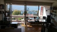BELLINZONA Luminoso Appartamento di 1.5 Locali  6500 Bellinzona Kanton:ti