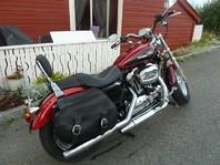 Harley-Davidson xl 1200c custom