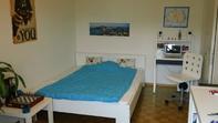 Schönes möbliertes WG Zimmer in Wallisellen ZH 8304 Wallisellen  Kanton:zh