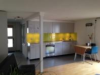 Sehr helle, freundliche Wohnung mit grosser Terrasse (32m2) 8340 Hinwil Kanton:zh