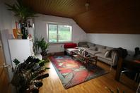 helle 3 Zimmerwohnung in Frenkendorf 4402 Frenkendorf Kanton:bl