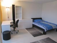 1.5 Zimmerwohnung in der Nähe Albisriederplatz, Zürich 8004 Zürich Kanton:zh