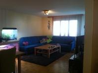 3.5 Zimmerwohnung mit Gartensitzplatz 8909 Zwillikon Kanton:zh