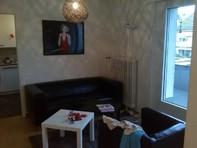 3,5 Zimmer Attika Wohnung in Zürich Höngg ab 01.08.2015  Kanton:zh
