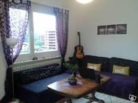 3.5 Zimmer Wohnung in Biasca Biasca Kanton:ti