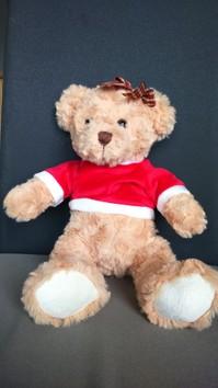 Teddybär sucht ein neues Zuhause