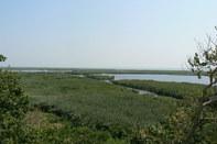 casa vacanza in Delta del Danubio