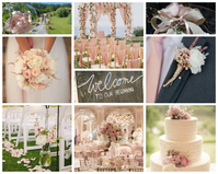 WEDDING & EVENTS PLANNER