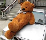 Biete: Mega XXL Teddy Teddybär 230cm Plüsch Plüschteddy Plüschbär Bär Kuschel Weihnachten Geschenk für Kind / Neu