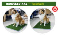 Hunde Hunde Welpen Klo WC XXL Grösse Hundeklo Welpentoilette Hundetoilette für Welpen Senioren Stubenrein mit Behälter