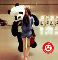 XXL Plüschtier Panda 200cm Stofftier Kuscheltier Geschenk Kind Frau Freundin